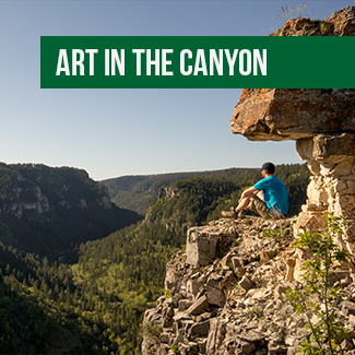 Art in the Canyon
