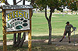 disc-golf_2662_thumb.jpg