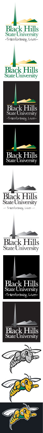 Visual Examples of the BHSU logo