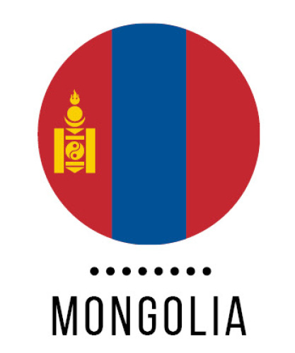 Study abroad in Mongolia!